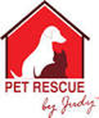 Pet Rescue,pet rescue near me,pet rescue saga,unleashed pet rescue,pet rescue by judy